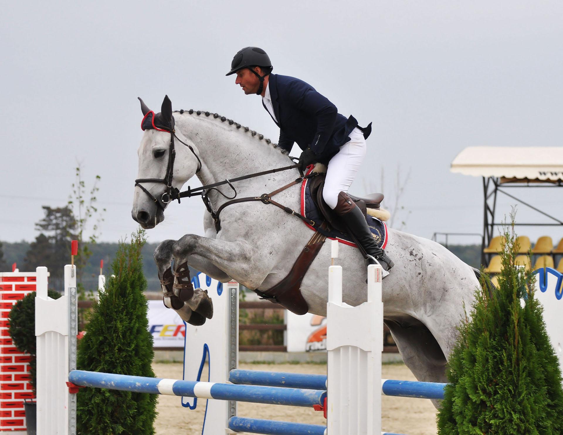 salonul-calul-06