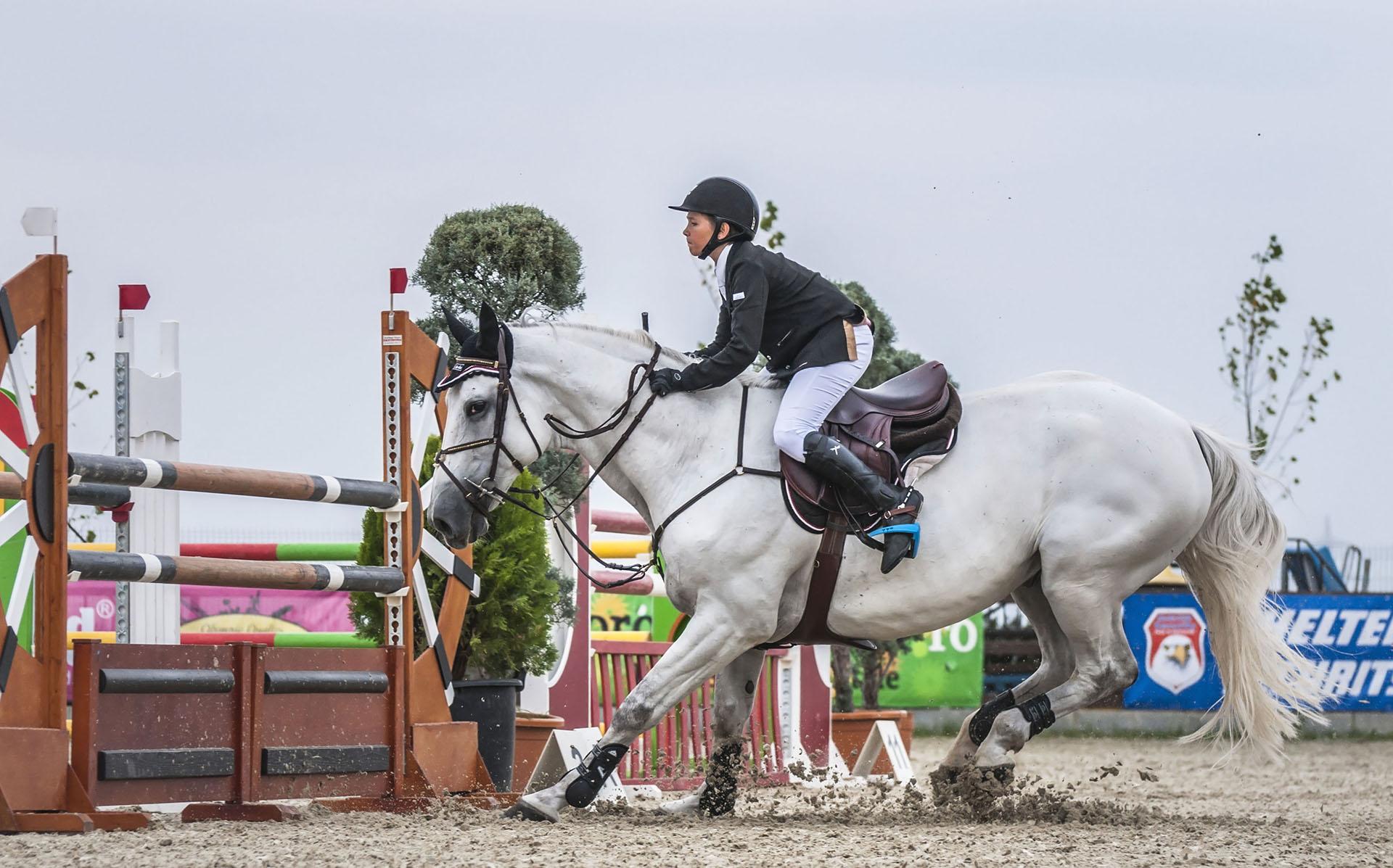 salonul-calul-09