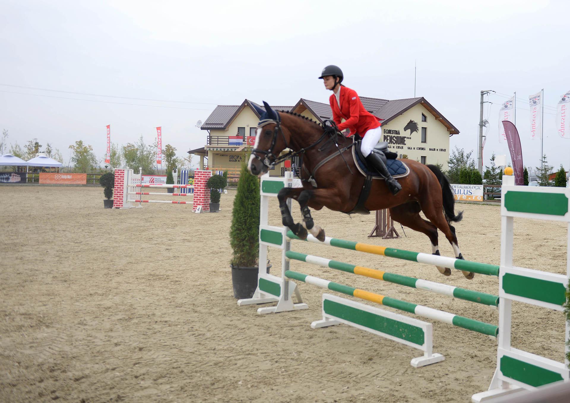 salonul-calul-14