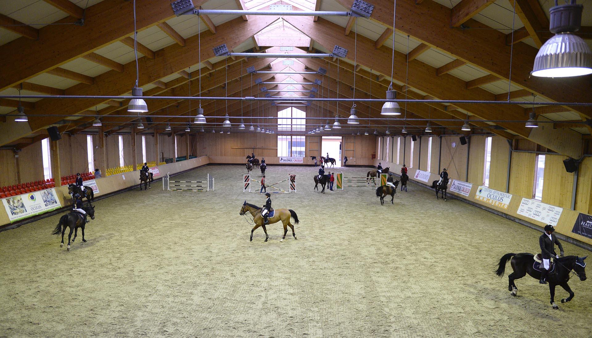 salonul-calul-23
