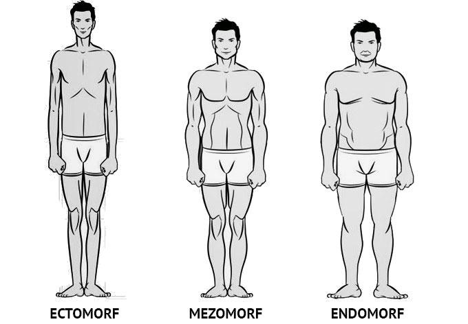 tipuri-somatice