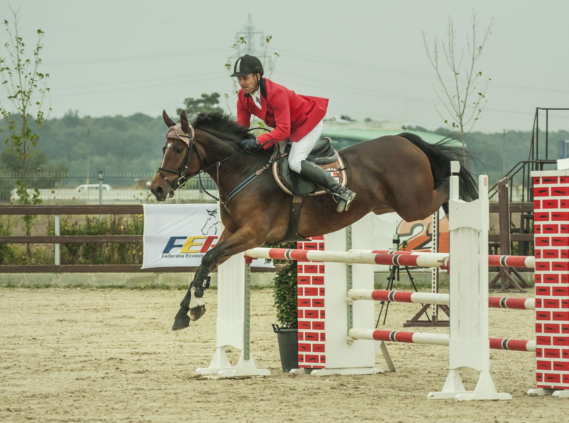 salonul-calul-02