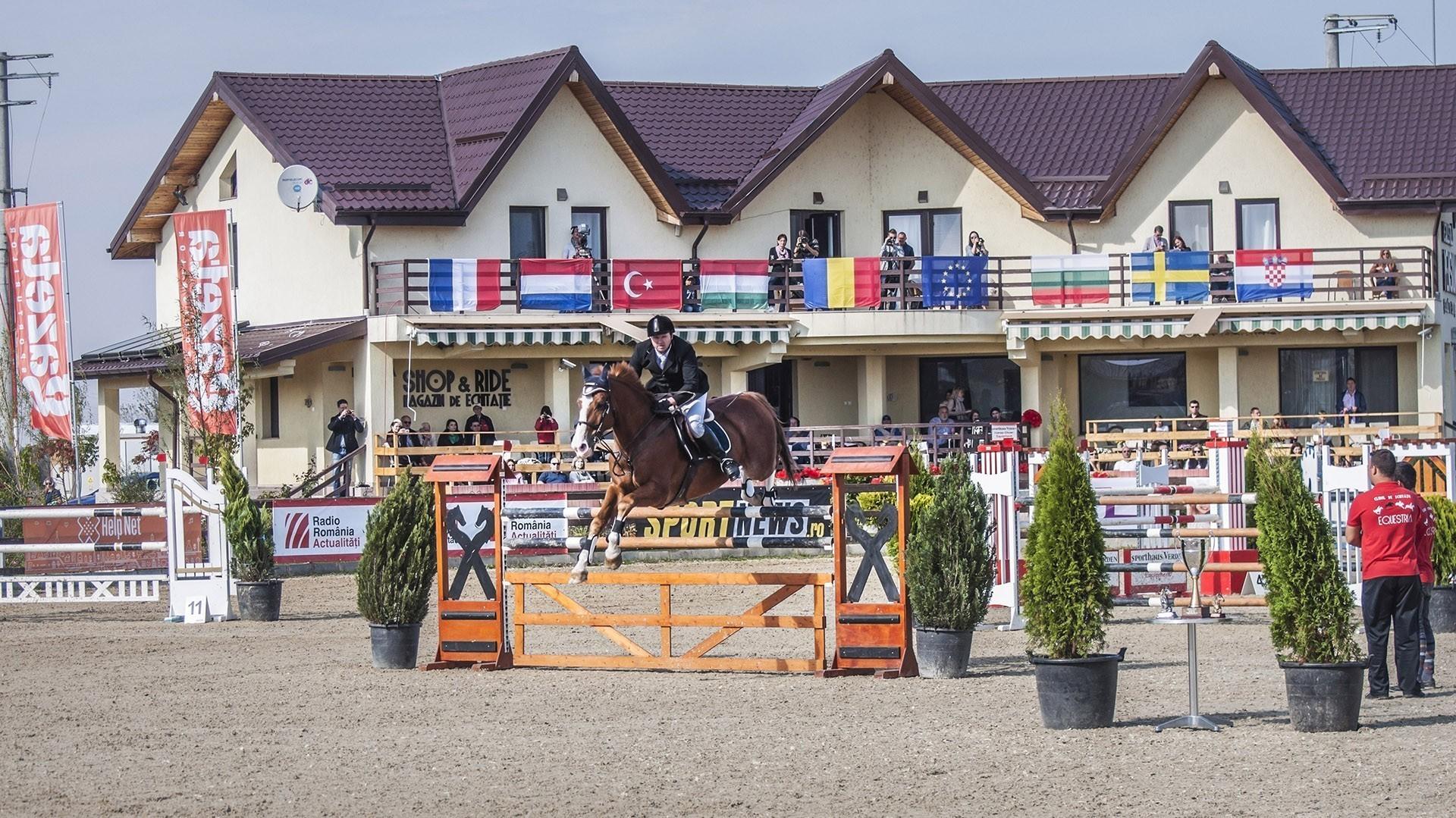 salonul-calul-12